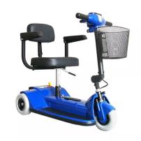 Traveler 3-Wheel